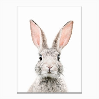 Bunny Face Canvas Print