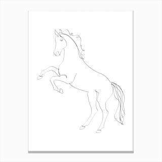 Horse Line II Canvas Print