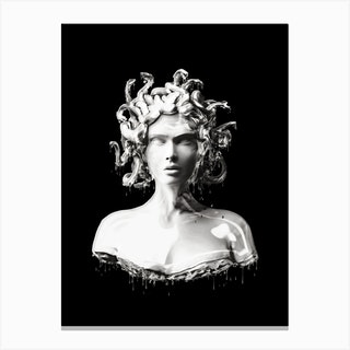Silver Medusa Canvas Print