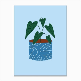 Pot Plant Canvas Print
