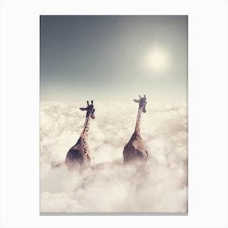 Giant Giraffes Canvas Print
