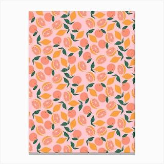 Citrus On Pink Canvas Print