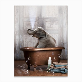 Elephant In A Bathtub Canvas Print