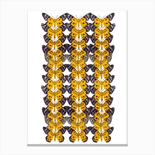 Three Rows Of Yellow Butterflies Canvas Print