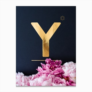 Flower Alphabet Y Canvas Print