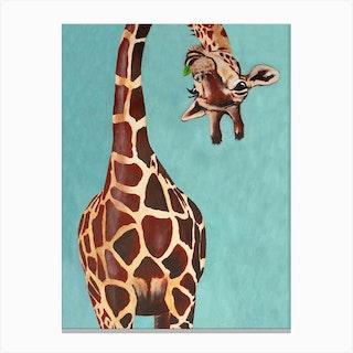 Giraffe With Green Leaf Canvas Print