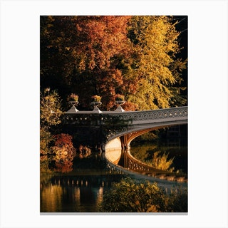 Central Park Pond Canvas Print