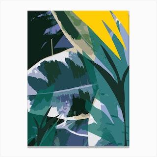 Ficus Elastica 3 Canvas Print