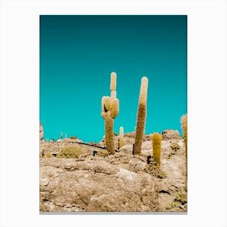 Uyuni Cactus Canvas Print