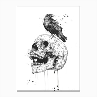 New skull (bw) Canvas Print