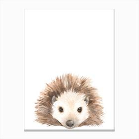 Nursery Hedgehog Canvas Print