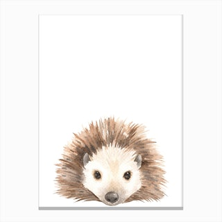 Nursery Hedgehog Canvas Print