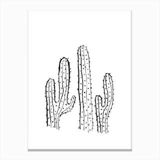 Cacti I Canvas Print