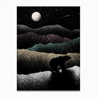 Wandering Bear Canvas Print
