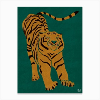 Tiger Doesnt Lose Sleep Canvas Print