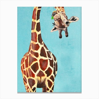 Giraffe With Green Leaf Canvas Print
