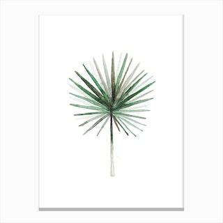 Simple Palm Leaf Canvas Print