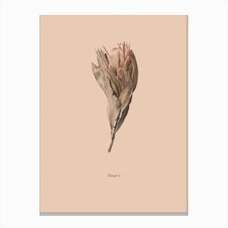 Botanico I Canvas Print