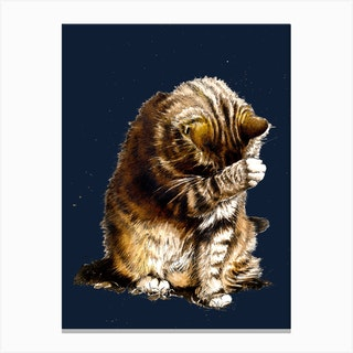 Small Fry The Cat On Midnight Blue Canvas Print