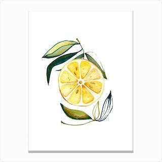Lemon 2 Canvas Print
