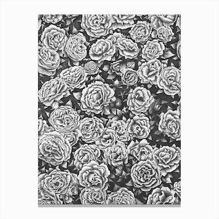 Blooming Garden Canvas Print
