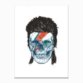 Bowie's Skull Canvas Print