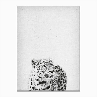Leopard III Canvas Print