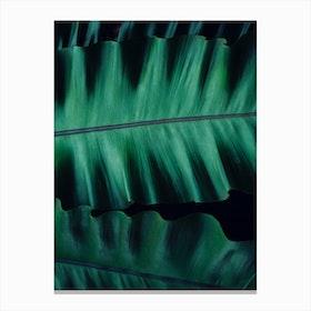 Green Velvet Canvas Print