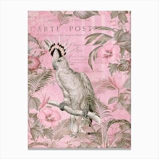 Cockatoo Paradise Pink Canvas Print