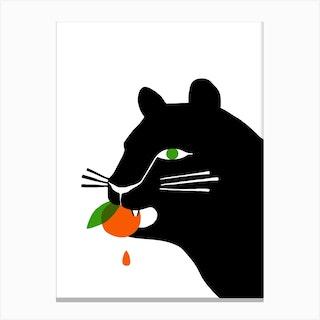 Big Cat Eating An Orange Canvas Print