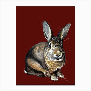 Meg The Bunny On Red Oxide Canvas Print