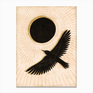Raven And A Black Sun Canvas Print