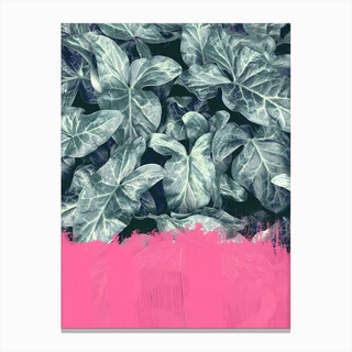 Pink Sorbet On Jungle Canvas Print