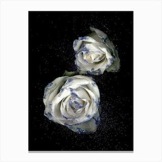 Flower Studies 13 Canvas Print
