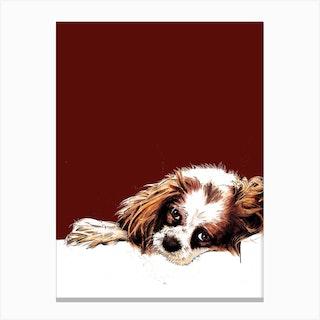 Meg The Cavalier Spaniel On Red Oxide Canvas Print