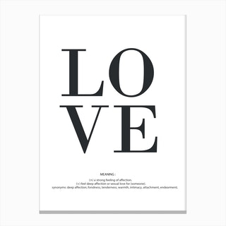 Love Meaning Canvas Print