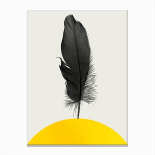 Dancing Feather Canvas Print