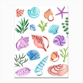 Seashells Final Canvas Print