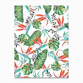 A New Paradise Canvas Print