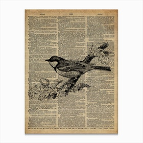 Sparrow Bird Canvas Print