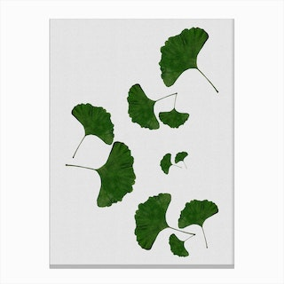 Ginkgo Leaf I Canvas Print