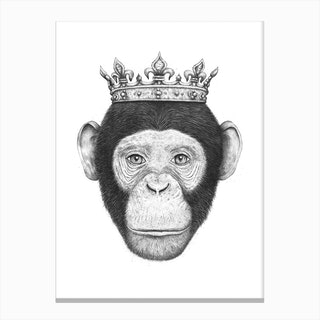 Monkey King Canvas Print