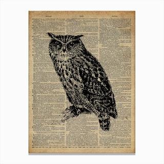 Owl Bird Canvas Print
