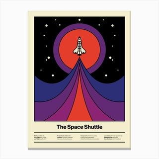 Space Fly Canvas Print