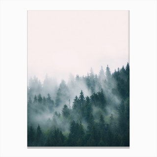 Fog And Forest Art Print By Sisi And Seb Fy