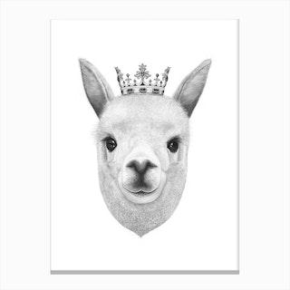 The King Llama Canvas Print