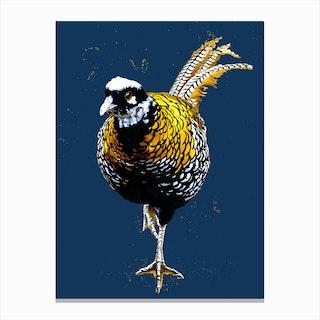 The Reeves Pheasant Canvas Print