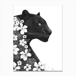 Panther With Flowers Canvas Print
