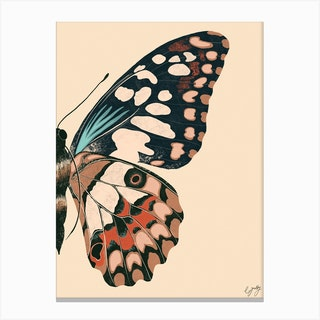 Butterfly Wing Cream Canvas Print