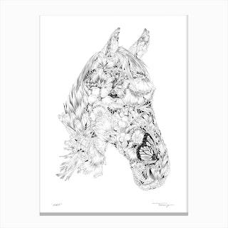 Horse I Canvas Print